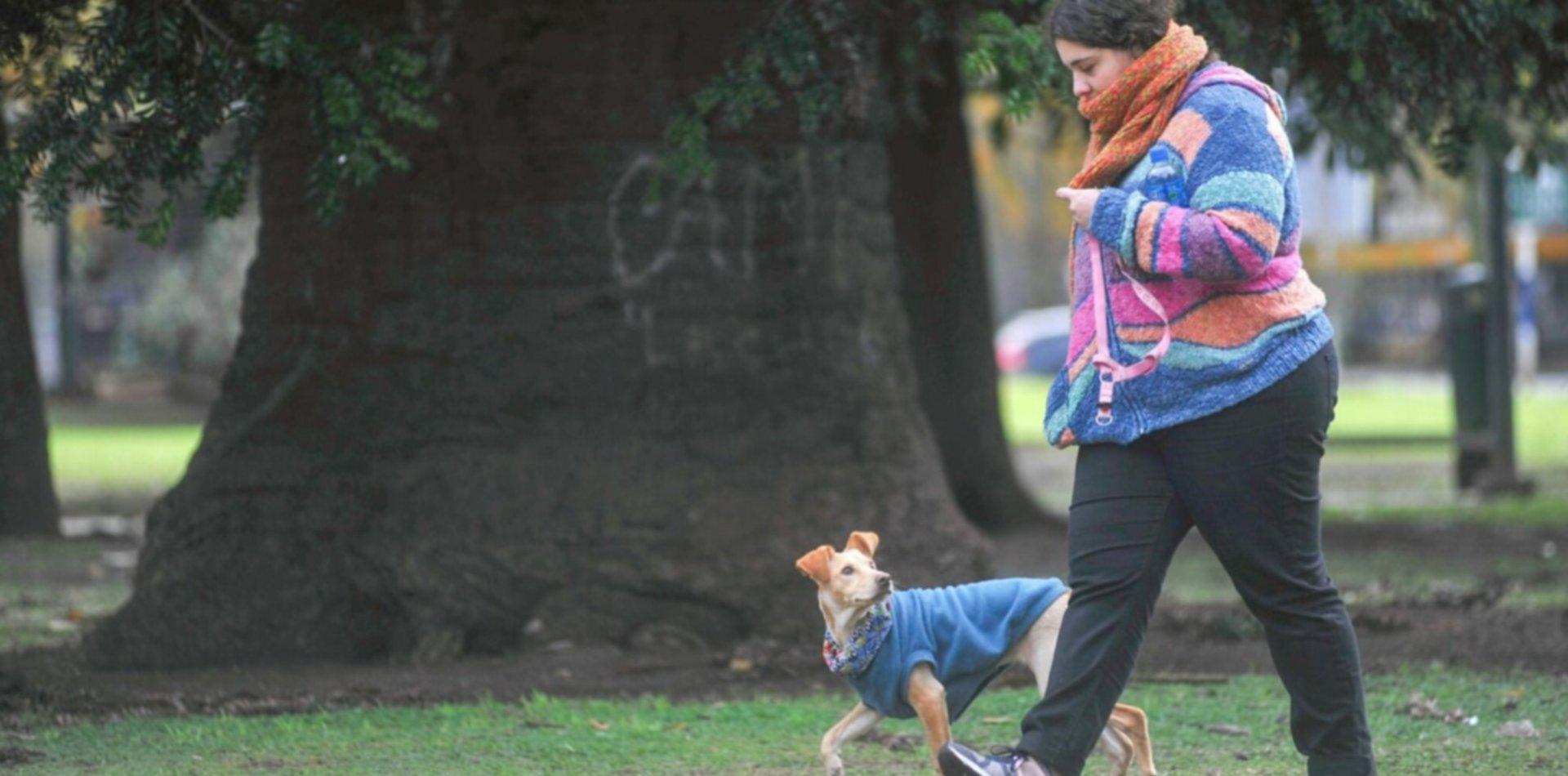 Tras la tormenta que nunca fue, llega el frío y así va a seguir el clima en La Plata