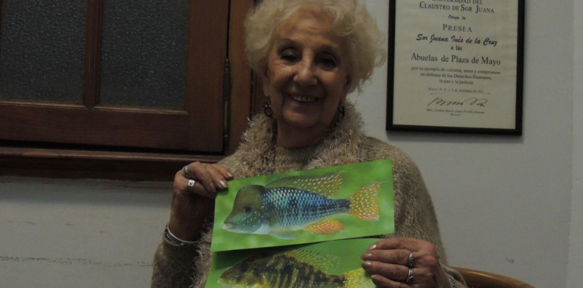Nombrar con amor y compromiso: la historia del pez que le rinde homenaje a las Abuelas de Plaza de Mayo