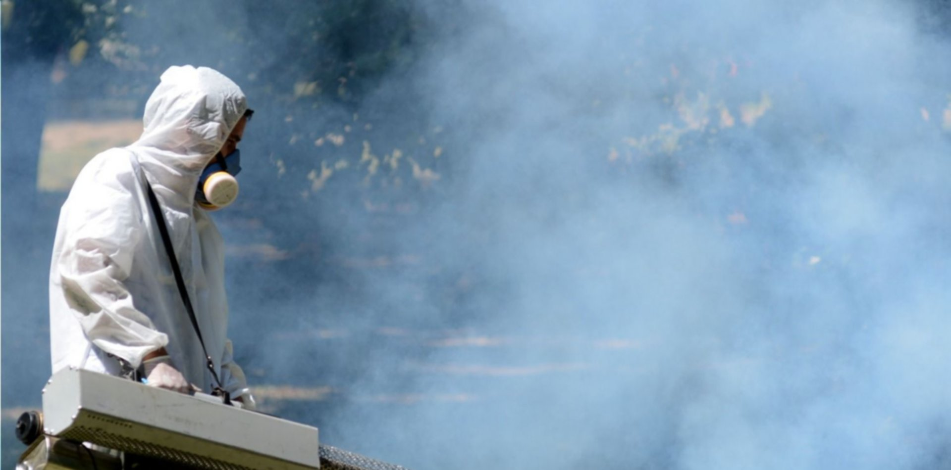 Dengue en La Plata: tuvieron que hacer un boquete para fumigar una casa llena de insectos