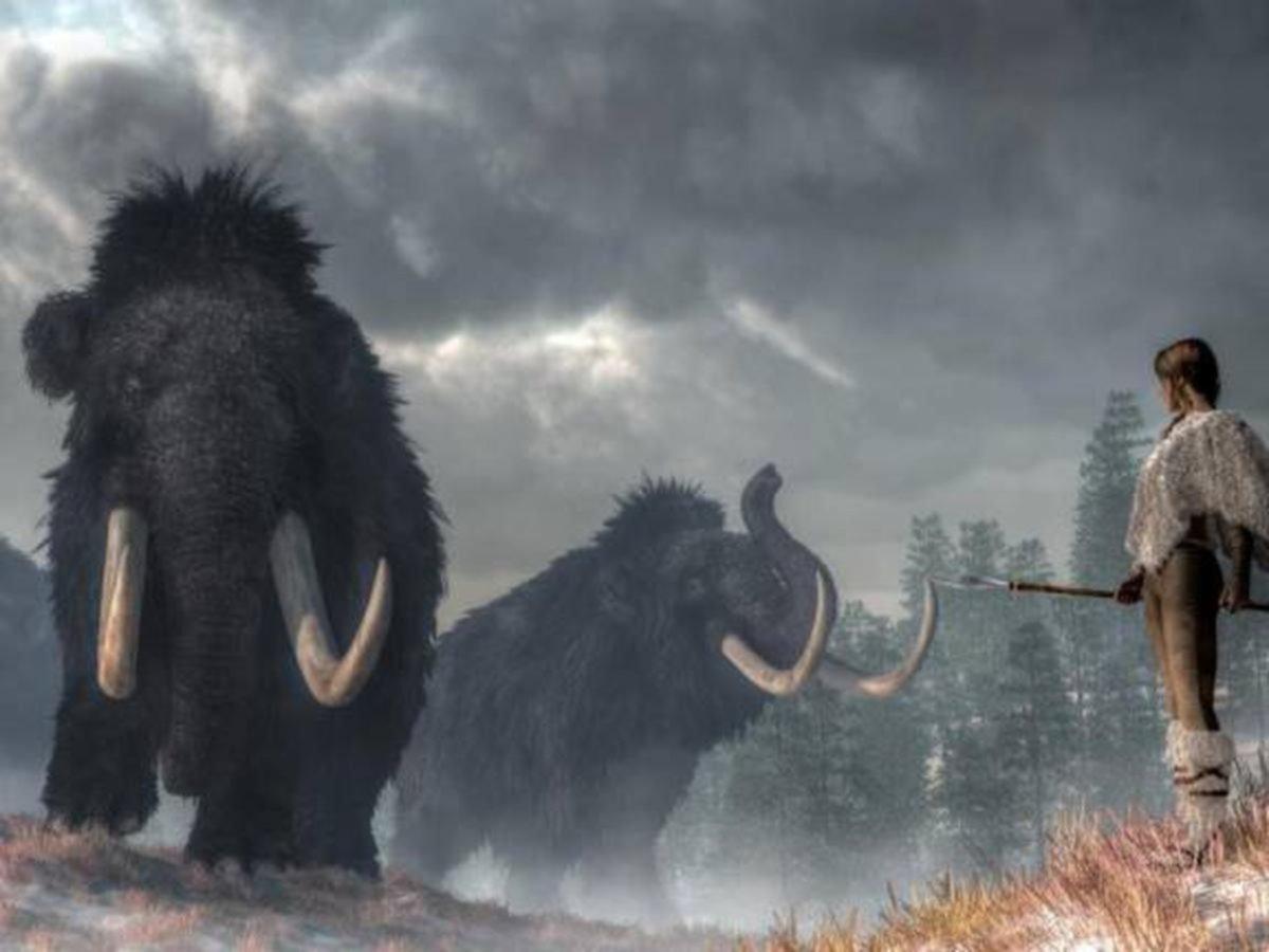 Antropólogos de la UNLP investigaron qué habría causado la extinción de la megafauna