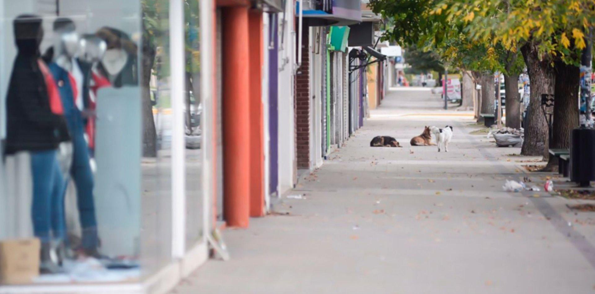 ¿Cómo será el funcionamiento de los servicios municipales durante Semana Santa en La Plata?