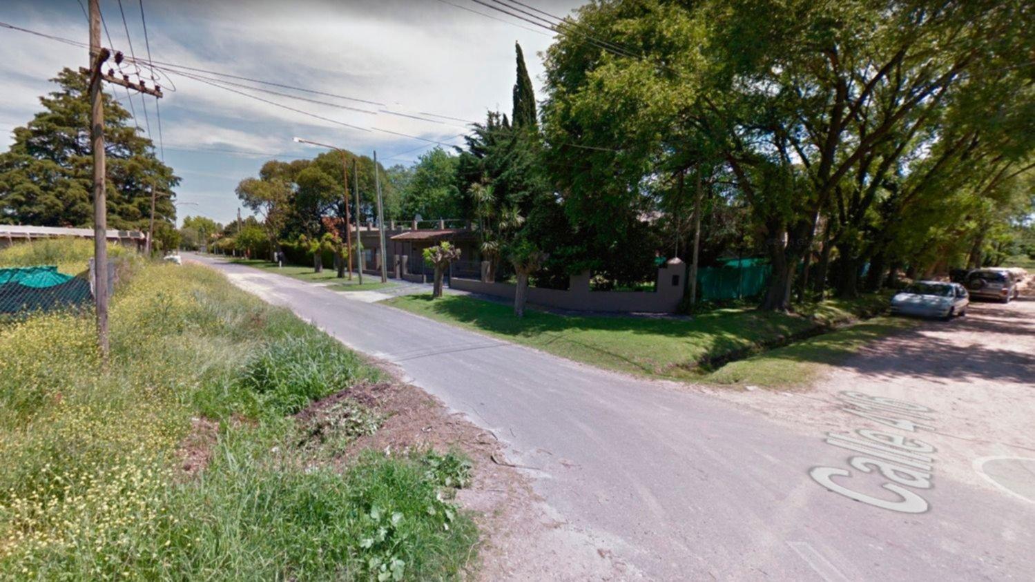 Las filmaron golpeando con palos a 40 perros en Villa Elisa y las denunciaron