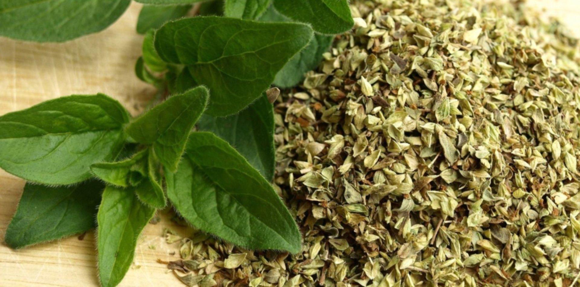 Resultado de imagen para ANMAT Prohibieron la venta de orégano Carrefour porque es salvado de trigo pintado de verde