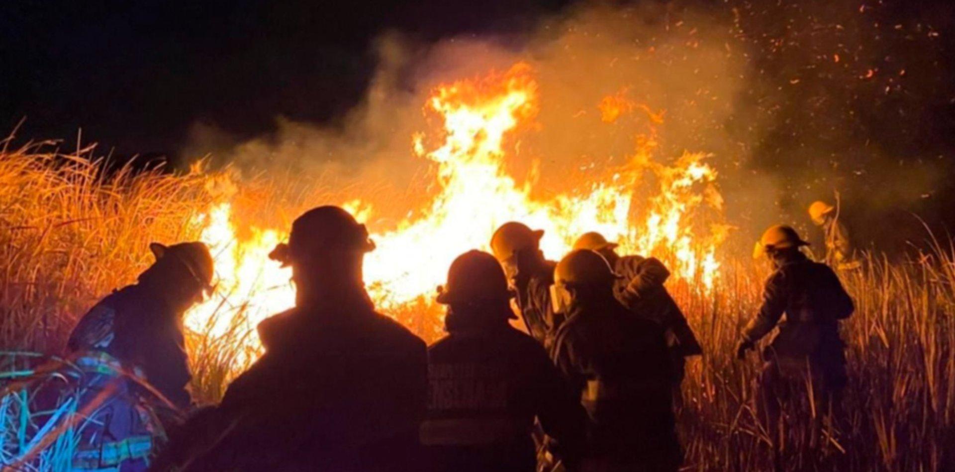 Un incendio junto a la Autopista causó alarma en La Plata