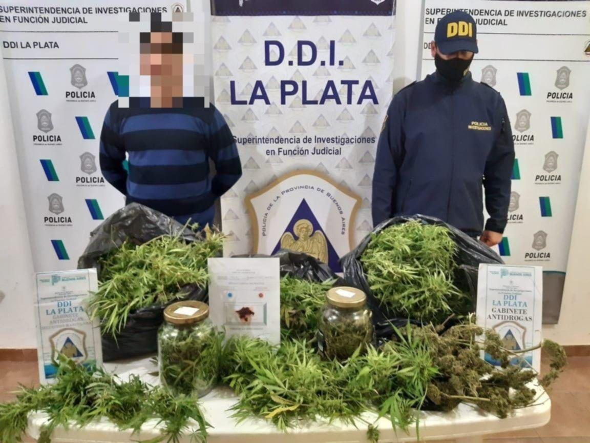 Tras un operativo en la región, incautaron marihuana valuada en más de un millón de pesos
