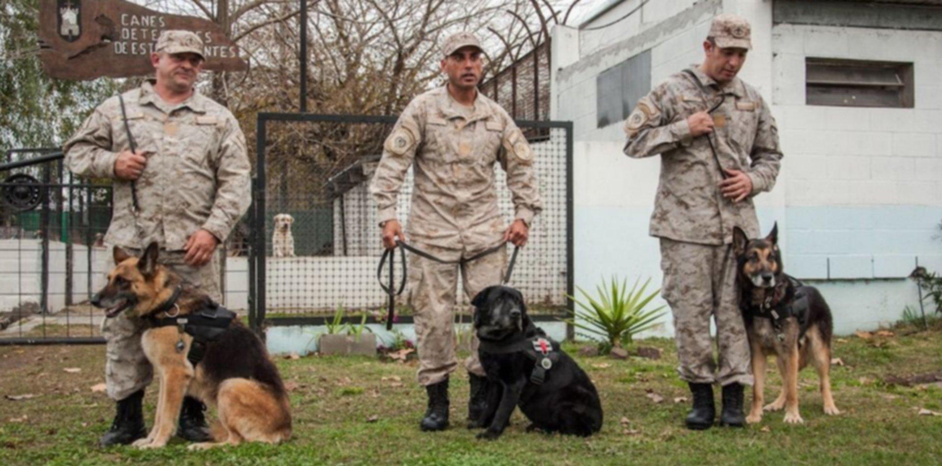 Pasaron a retiro a tres perros penitenciarios con un emocionante homenaje en La Plata