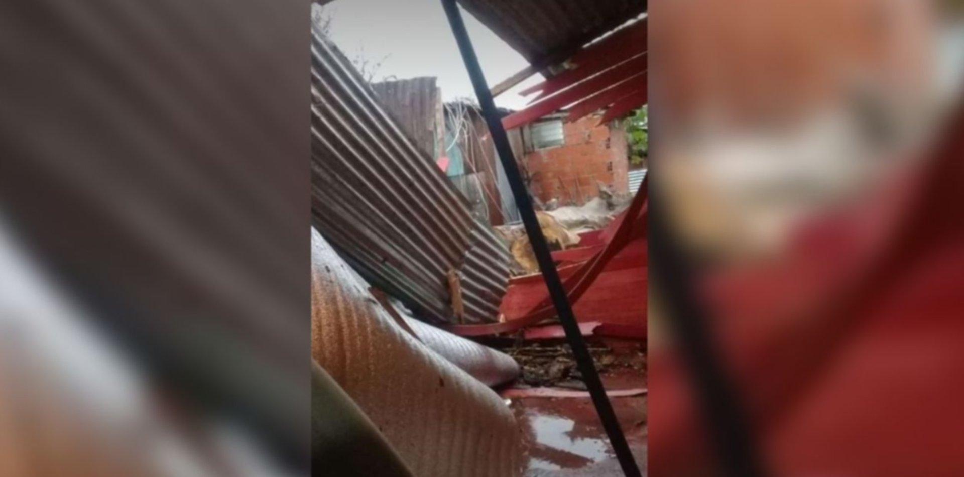 Cayó un árbol sobre una casa de Tolosa, la destruyó y la familia pide ayuda