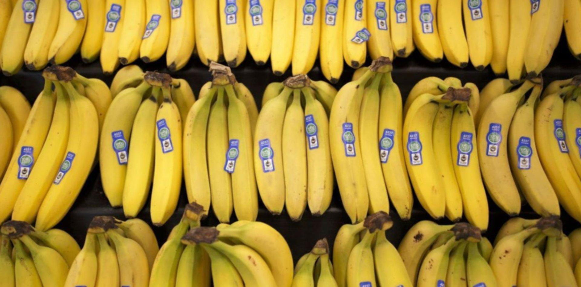 Compraron bananas en el supermercado, volvieron y encontraron un escorpión adentro