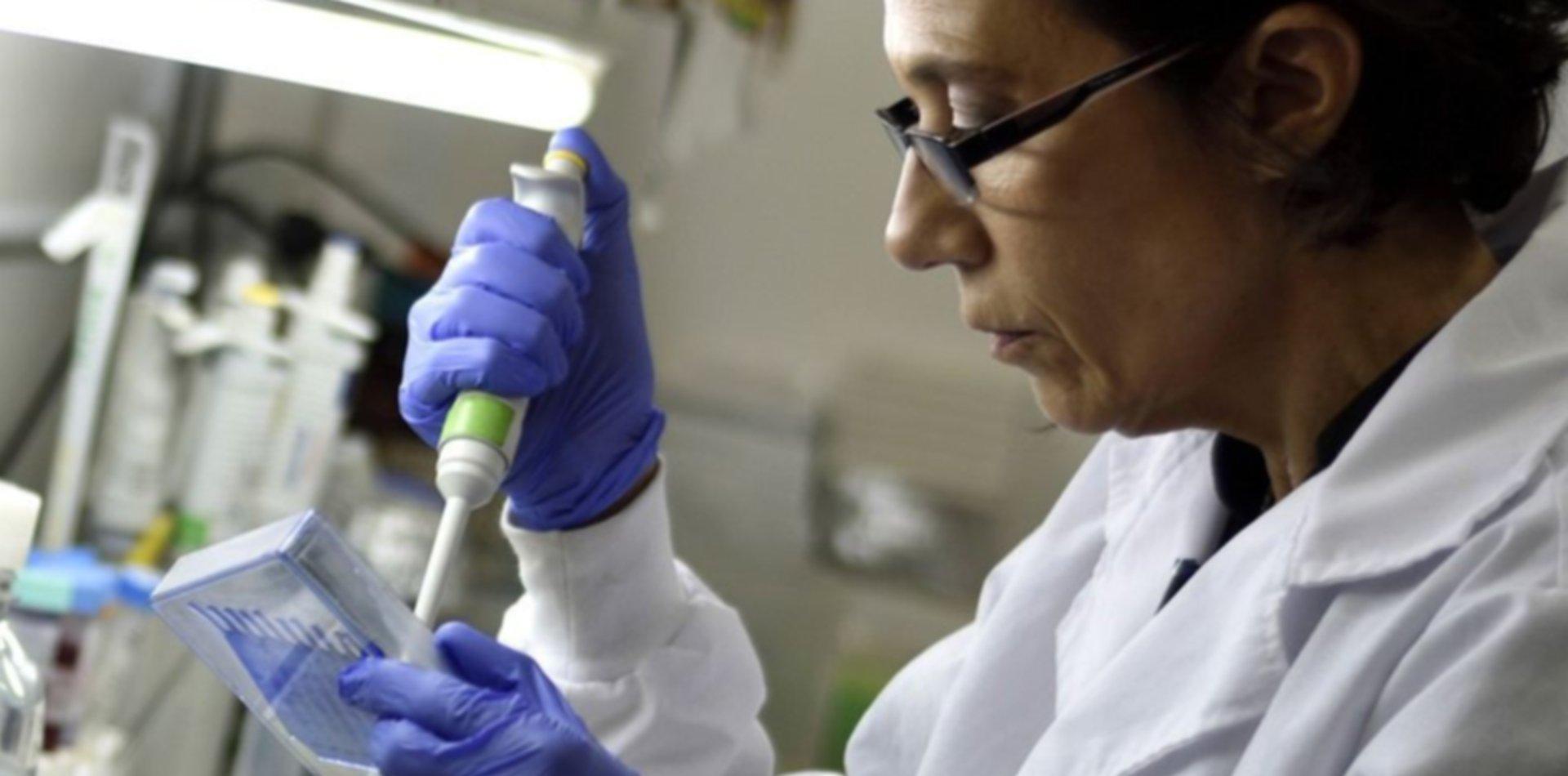 Coronavirus: cuál es la diferencia entre anticuerpos e inmunidad