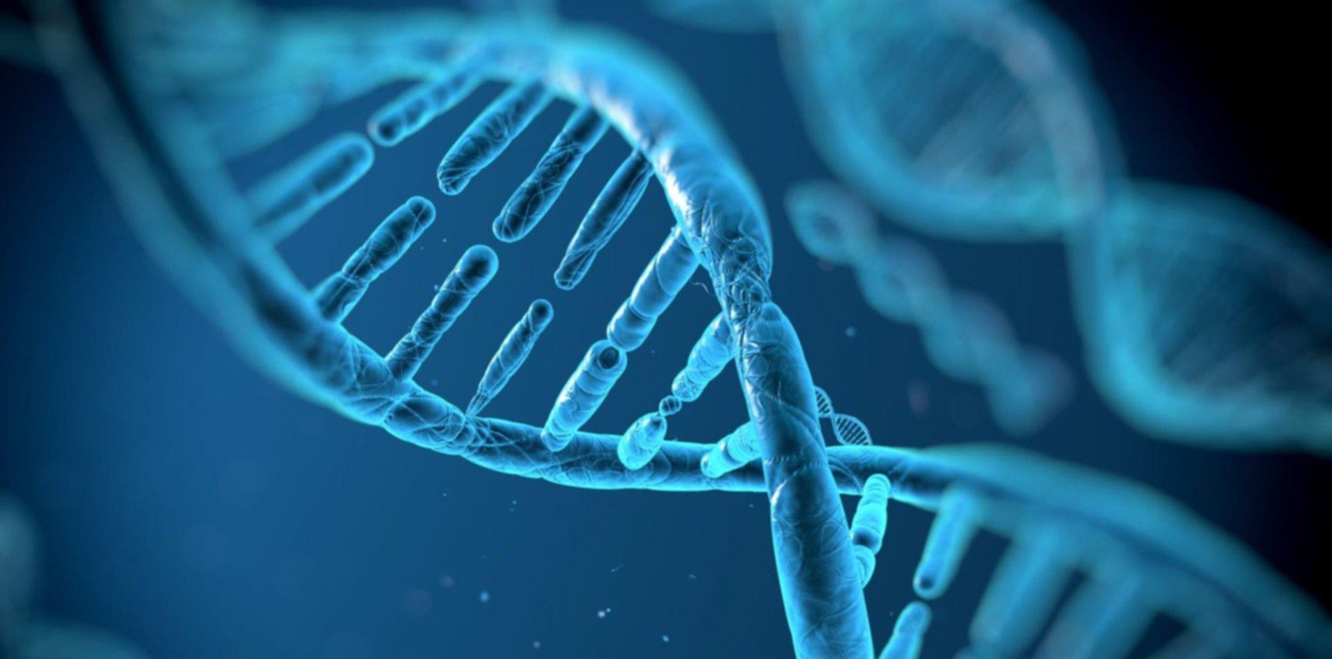 Una empresa de La Plata realiza estudios de ADN que permiten predecir enfermedades