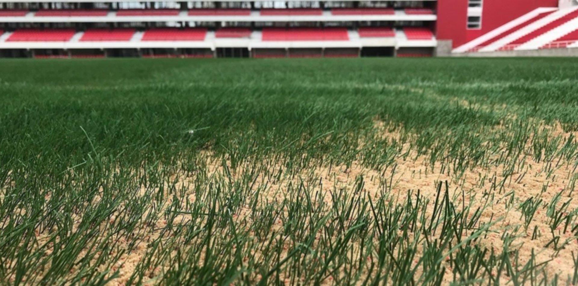 La cuenta regresiva de Estudiantes: terminó el sembrado del césped en 1 y 57