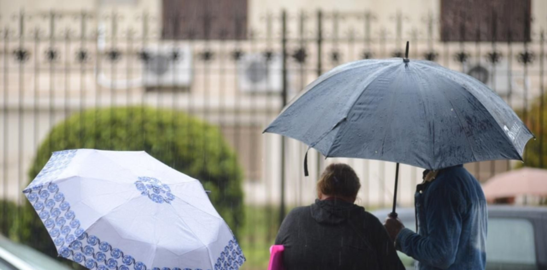 Calor, humedad y ¿lluvias?: así va seguir el clima en La Plata