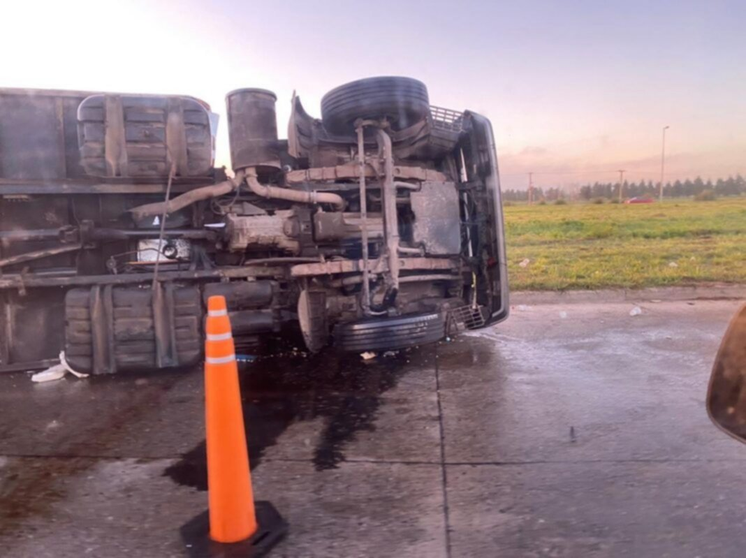 Otro accidente de tránsito en Brandsen: un camión repleto de carne volcó en la Ruta 215