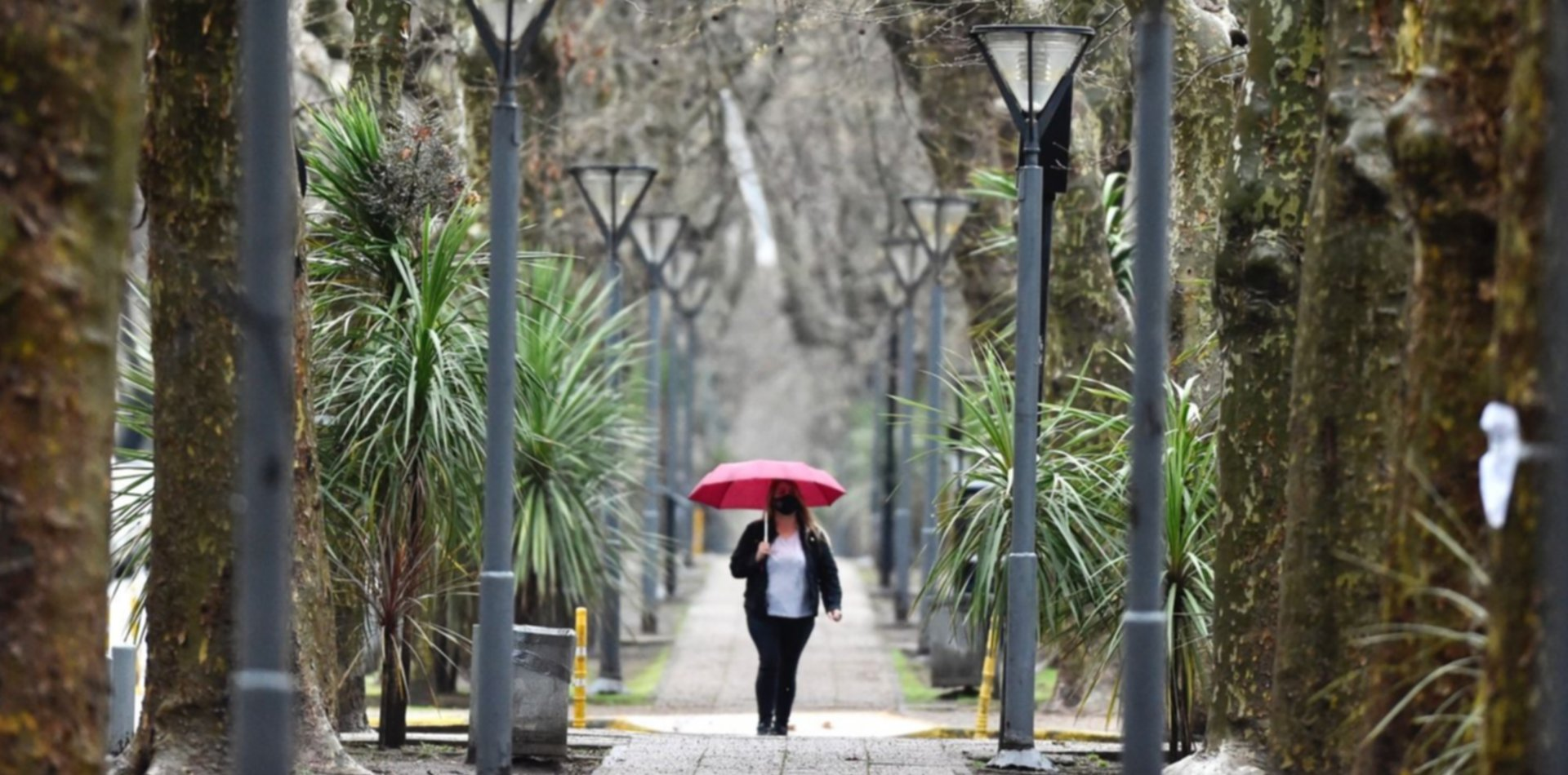 El jueves empezó soleado pero hay alerta por fuertes vientos y anuncian tormentas