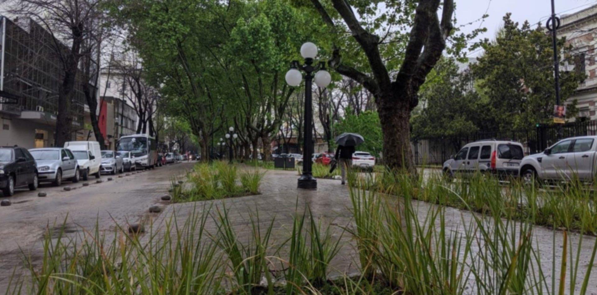 Terminaron las obras en 51 y así luce la flamante peatonal de La Plata Soho