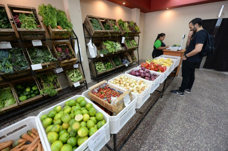 Venden frutas y verduras a precios populares: ¿cuánto salen y dónde conseguirlas?